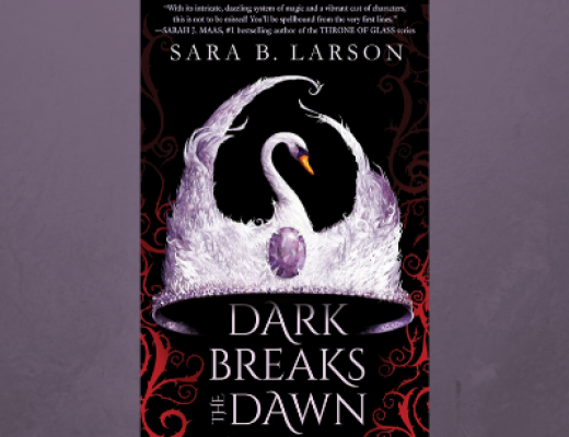 Dark Breaks the Dawn by Sara B Larson | Review