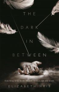 the dark in between elizabeth hrib book cover