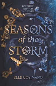 seasons of the storm elle cosimano book cover